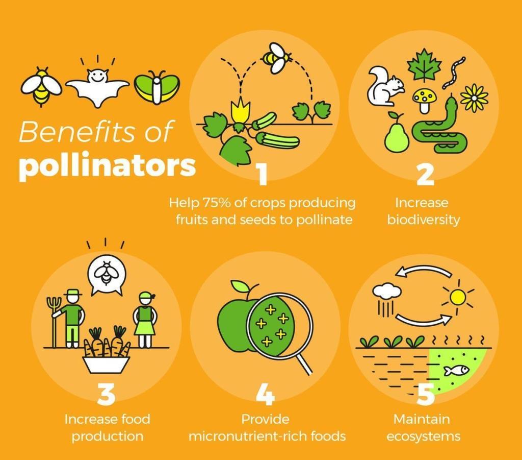 मधुमक्खी पालन से होने वाले फायदे